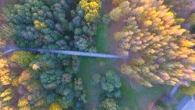 Most w jesień Zdjęcia Royalty Free