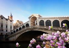 most Włoch kantor Wenecji Obrazy Stock