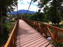 Most w Peru tropikalnym lesie deszczowym Zdjęcia Royalty Free