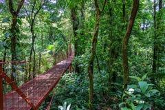 Most w tropikalnym lesie deszczowym Monteverde Obrazy Royalty Free