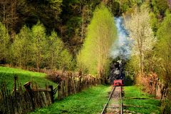 Steam train named Mocanita in Vaser Valley, Maramures, Romania. in spring time. The most well-known mocanita runs in the Vaser Valley in Maramures County. This royalty free stock photos