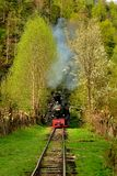 Steam train named Mocanita in Vaser Valley, Maramures, Romania. in spring time. The most well-known mocanita runs in the Vaser Valley in Maramures County. This Royalty Free Stock Image