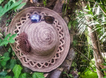 Most women's hat and sunglasses on the background of trees. Stock Photography