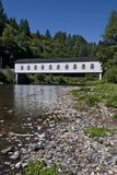 most zakrywający goodpasture Zdjęcie Stock
