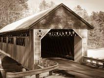 most zakrywający sepia Zdjęcia Royalty Free