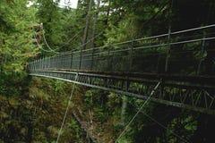 most zawieszenie Zdjęcia Royalty Free