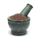 Mostarda de Brown orgânica & x28; Brassica Juncea & x29; no pilão de mármore Imagem de Stock