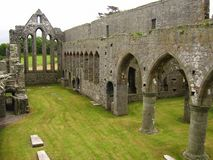 Mosteiro de Ardfert Foto de Stock Royalty Free