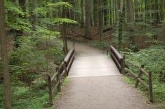 mostek do lasu obrazy stock