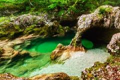 Mostnica gorge, Bohinj, Slovenia. River Mostnica Mostnice Korita and Elephant formation  near lake Bohinj in Slovenia Stock Image