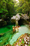 Mostnica gorge, Bohinj, Slovenia. River Mostnica Mostnice Korita and Elephant formation  near lake Bohinj in Slovenia Stock Photo