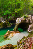 Mostnica gorge, Bohinj, Slovenia Royalty Free Stock Photography