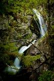 Mostnica Wasserfall Stockfotos