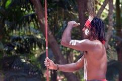 Mostra aborígene da cultura em Queensland Austrália fotografia de stock royalty free