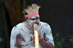 Mostra aborígene da cultura em Queensland Austrália imagens de stock royalty free