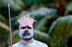 Mostra aborígene da cultura em Queensland Austrália imagem de stock royalty free