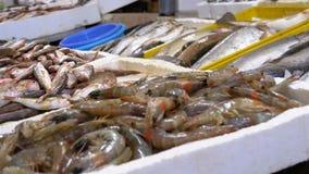 Mostra com as lagostas no gelo do mercado de rua filme