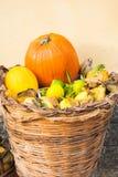 A mostra com outono diferente frutifica em uma cesta de vime grande imagens de stock royalty free