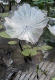 Mostra dall'artista di vetro Dale Chihuly nella Camera ai giardini di Kew, Richmond, Londra, Regno Unito di Waterlily fotografia stock