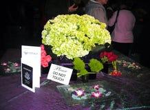 Mostra de flor Fotos de Stock Royalty Free