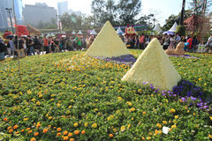 Mostra de flor 2012 de Hong Kong Imagem de Stock Royalty Free