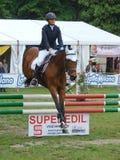 Mostra de salto do cavalo Imagens de Stock