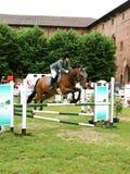 Mostra de salto do cavalo Foto de Stock
