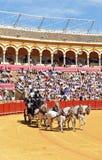 Mostra dei carrelli del cavallo, Maestranza, Siviglia, Spagna fotografia stock libera da diritti