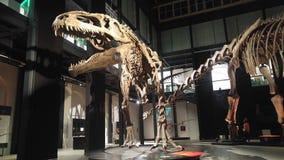 Mostra dei dinosauri Immagini Stock Libere da Diritti