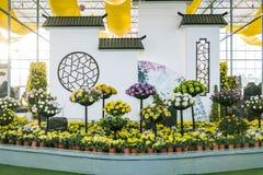 Mostra del crisantemo Fotografie Stock