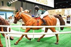 Mostra dell'equites e di Abu Dhabi International Hunting (ADIHEX) - Abu Dhabi Equestrian Club fotografie stock