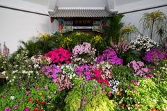 Mostra dell'interno dei fiori Immagini Stock