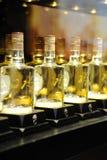 Álcool de Swellfun, licor famoso do chinês Fotografia de Stock Royalty Free