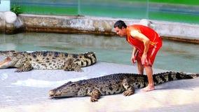 Mostra do crocodilo Instrutor animal e crocodilos na arena tailândia Ásia filme