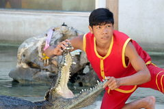 Mostra do crocodilo na exploração agrícola do crocodilo de Samutprakarn e no jardim zoológico, Tailândia Foto de Stock Royalty Free