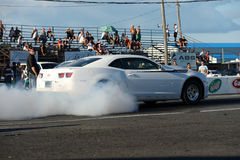 Mostra do fumo de Camaro Fotografia de Stock Royalty Free