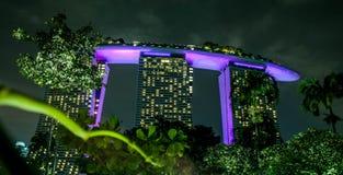 Mostra do laser de Singapura Marina Bay Sand e jardim pela baía Imagem de Stock