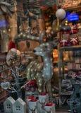 Mostra do Natal Foto de Stock Royalty Free