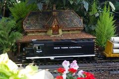 Mostra do trem do feriado Imagens de Stock Royalty Free