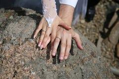 Mostra dos noivos suas mãos que vestem as alianças de casamento fotografia de stock royalty free