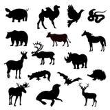 Mostra em silhueta o animal no fundo branco Fotografia de Stock Royalty Free