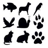 Mostra em silhueta o animal no fundo branco Imagens de Stock Royalty Free