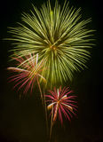 Mostra/Guy Fawkes Night dos fogos-de-artifício Imagens de Stock