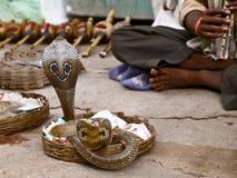 Mostra indiana nacional - invocação da serpente Fotos de Stock