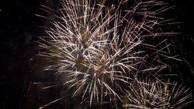 Mostra pirotécnica do fogo de artifício video estoque