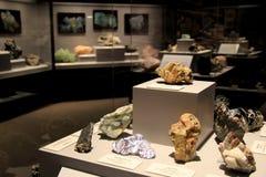 Mostra spettacolare che montra una frazione dei minerali scoperti e visualizzati al museo dello Stato di New York, Albany, New Yo Immagine Stock