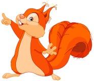 Mostras do esquilo Fotografia de Stock