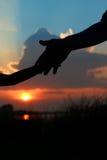 Mostre em silhueta as posses do pai a mão de uma criança Imagem de Stock Royalty Free