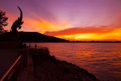 Mostre em silhueta a cabeça da grande estátua do Naga em Songkla, Tailândia fotos de stock royalty free