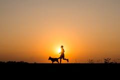 Mostre em silhueta o homem e o cão que movimentam-se no fundo do por do sol Imagens de Stock Royalty Free